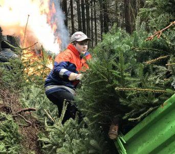 Weihnachtsbaumaktion 2019